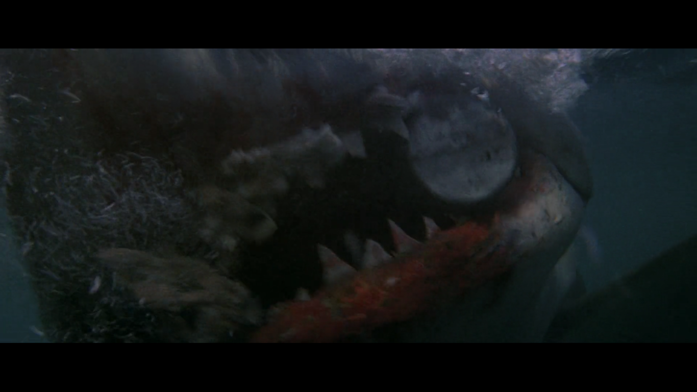 jaws031